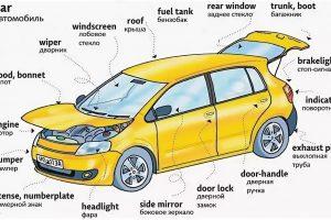 Терминология формального страхования для авто